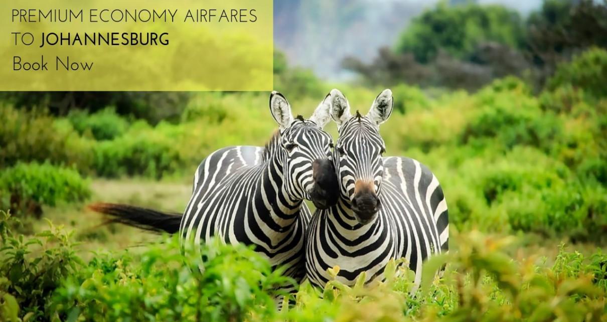 TravelGuzs premium economy class offers