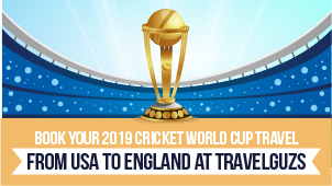 Cricket World Cup Banner