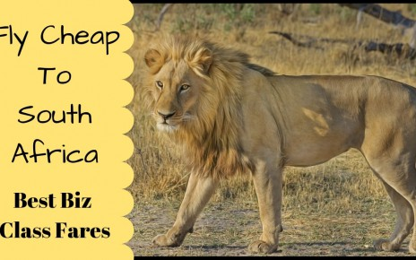 Cheap Business Class Fares To South Africa