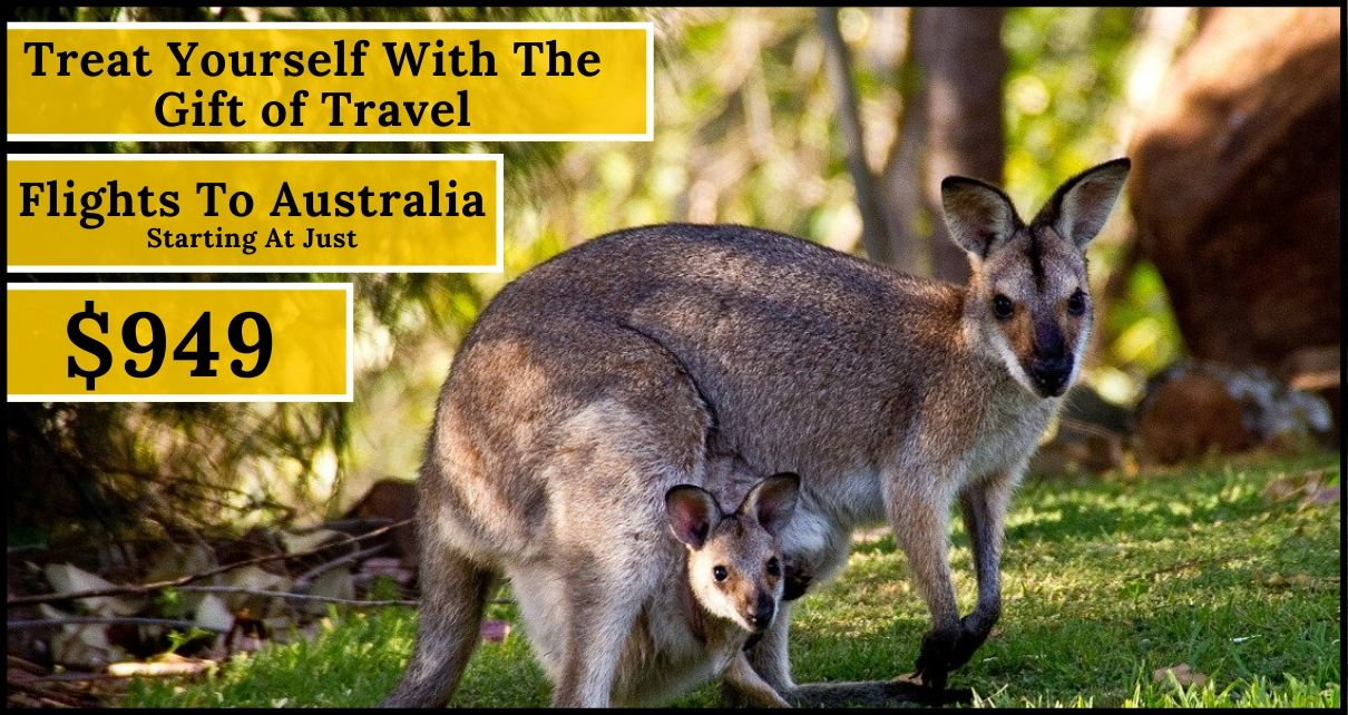 Unbelievable Deals On Flights to Australia- Year-End Sale